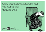 At least it wasn't pee water.