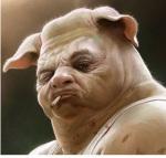 pig_headed