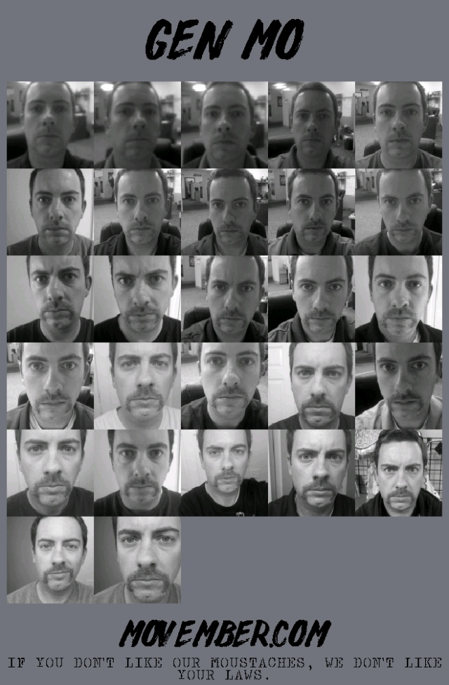 The Daily Progression for the JMo taken using the Mo Tracker from the Movember app.