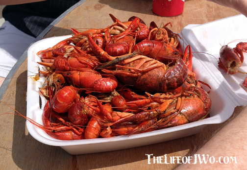 Crawfish-Festival