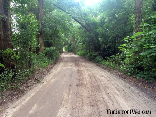 This is one of the roads to Tammy's family in Citra.